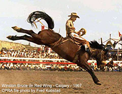 Winston Bruce - World Champion Saddle Bronc Rider
