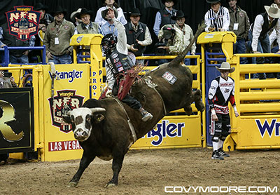 Wranglers Extreme - Calgary Stampede - Covy Moore photo