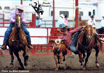 Chance Butterfield - Steer Wrestler