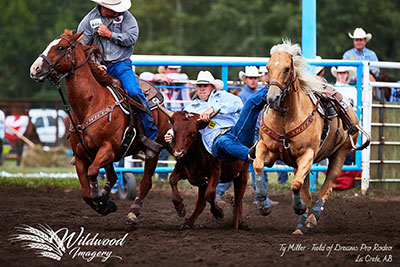 Ty Miller - Wildwood Imagery copyright